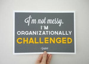 12-2 not-messy-im-organizationally-challenged