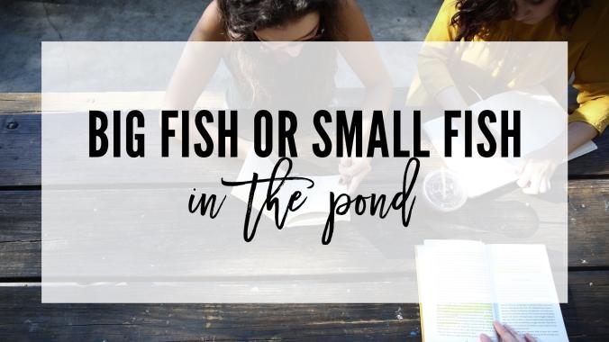 blog_bigfishsmallfish
