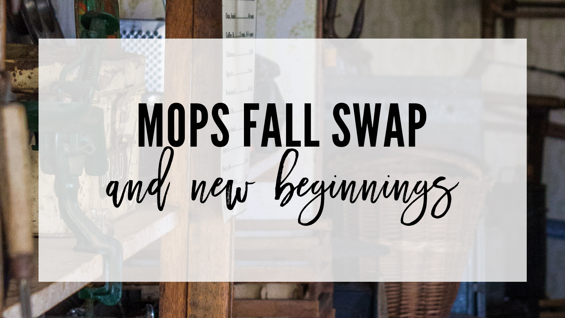 MOPS of Newnan Fall Swap
